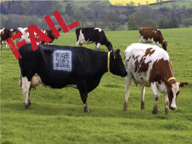 Increase engagement with these 5 must-know QR Code best practices | QR4U.in